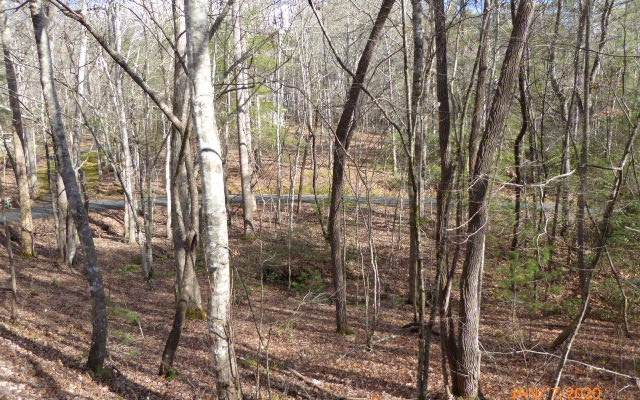 LT 14 Northside Mountain, Suches, GA 30572 (MLS #295261) :: RE/MAX Town & Country