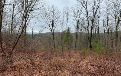 421 Plantation Lane, Blue Ridge, GA 30513 (MLS #295376) :: RE/MAX Town & Country