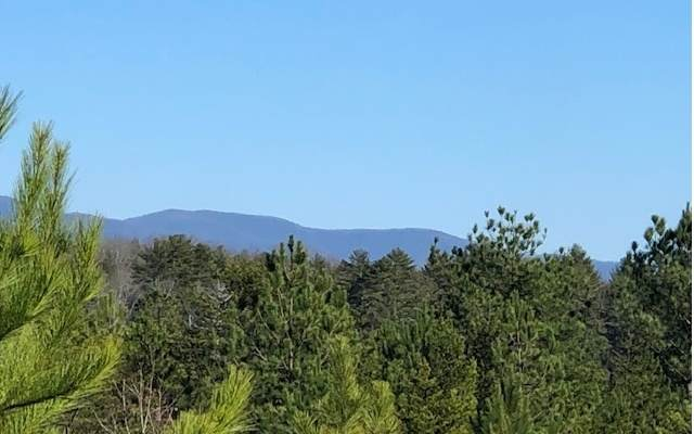 LOT29 Northshore, Blairsville, GA 30512 (MLS #295489) :: RE/MAX Town & Country