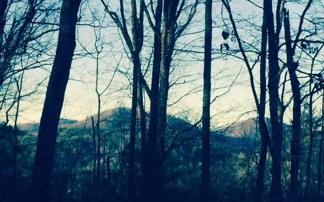 Laurel Trail, Suches, GA 30572 (MLS #295552) :: Path & Post Real Estate