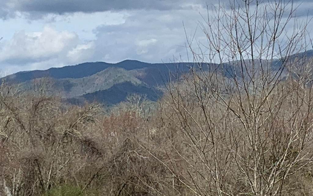 LOT 3 Maple Ridge - Photo 1