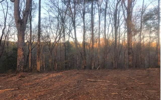 TR 29 Hap Holt Road, Ellijay, GA 30540 (MLS #296454) :: RE/MAX Town & Country