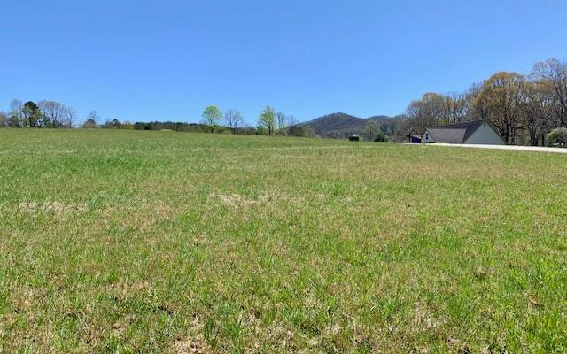 LT 23 Barons Ridge, Blairsville, GA 30512 (MLS #296538) :: RE/MAX Town & Country