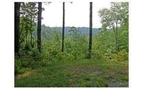 18 Pickett Mill Ln, Ellijay, GA 30540 (MLS #296609) :: Path & Post Real Estate