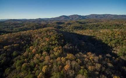 LT 24 Tanager Trail, Ellijay, GA 30536 (MLS #296623) :: RE/MAX Town & Country