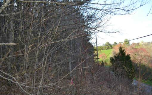 104 Hideaway Trail, Copperhill, TN 37317 (MLS #297042) :: RE/MAX Town & Country