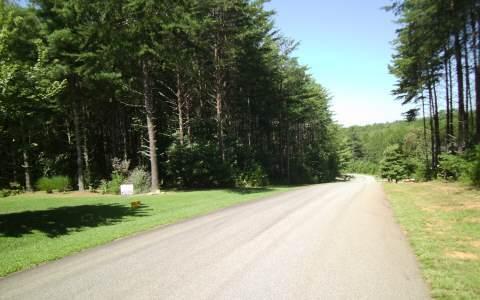 LT101 Creek Hollow Lane - Photo 1