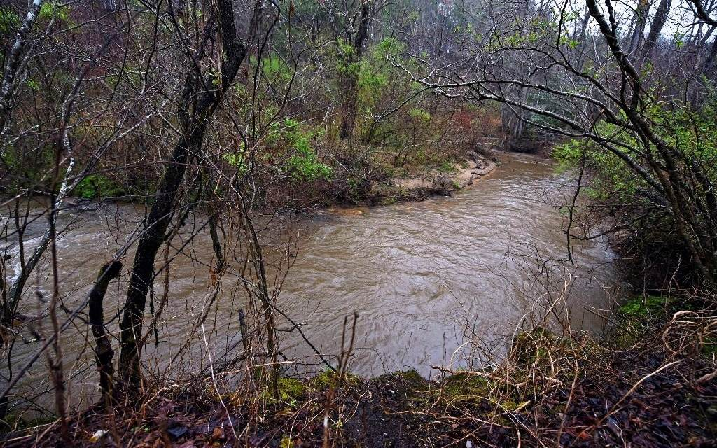 LT 41 Raper Mill Creek - Photo 1