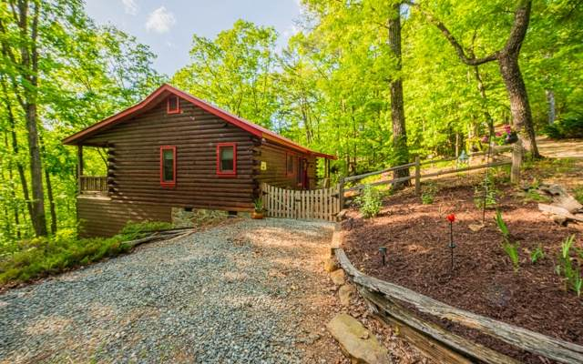160 Smith Hill Road, Cherry Log, GA 30513 (MLS #297325) :: RE/MAX Town & Country