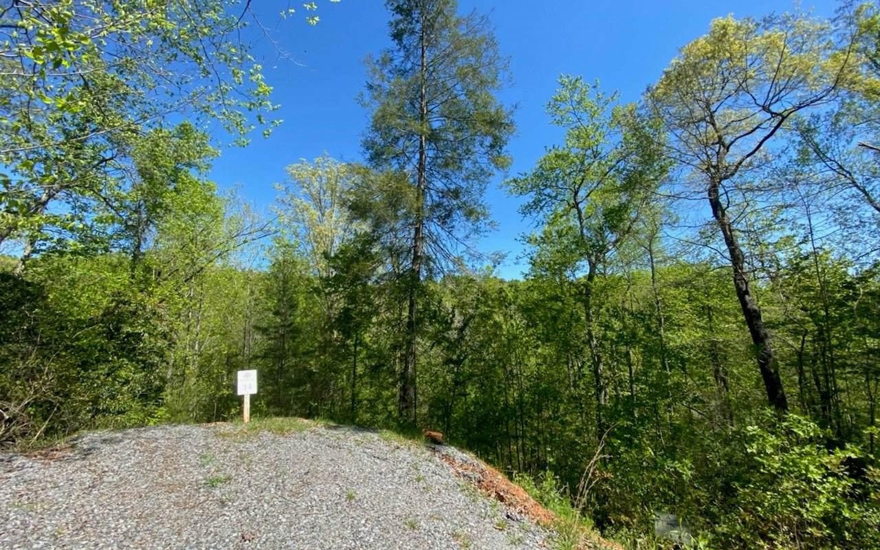 LT 14 Staurolite Mountain - Photo 1