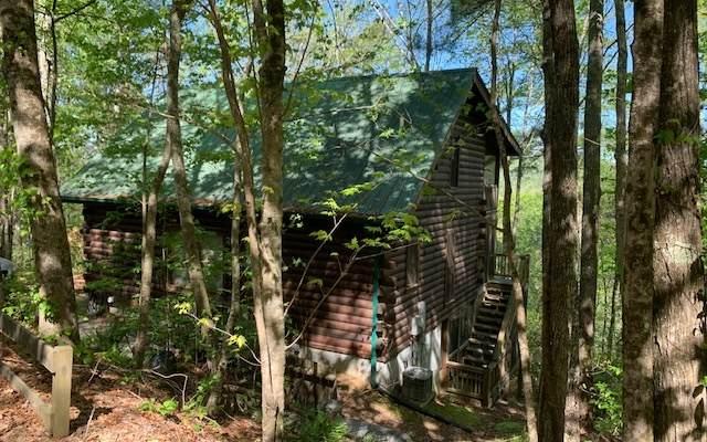 279 Laurel Creek Road, Cherry Log, GA 30522 (MLS #297436) :: RE/MAX Town & Country