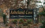 LT 10 Asheland Cove - Photo 5