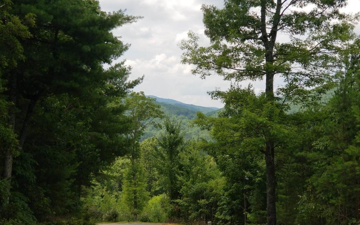 6 Whispering Springs - Photo 1