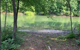 New Water Way, Blairsville, GA 30512 (MLS #298939) :: RE/MAX Town & Country
