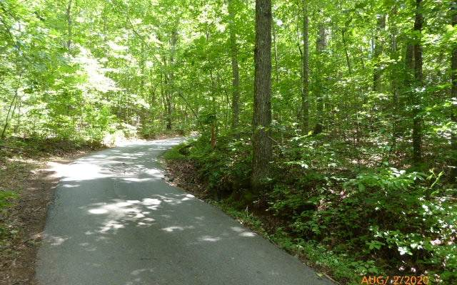 LT25 Mccracken Cove, Hayesville, NC 28904 (MLS #299360) :: Path & Post Real Estate