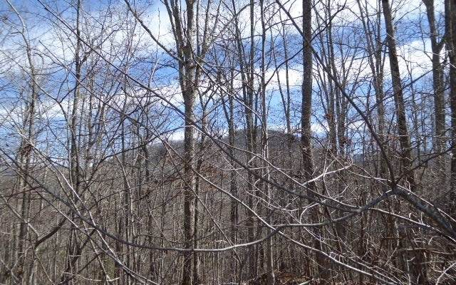 LT113 Shiloh Stables, Hayesville, NC 28904 (MLS #299559) :: Path & Post Real Estate