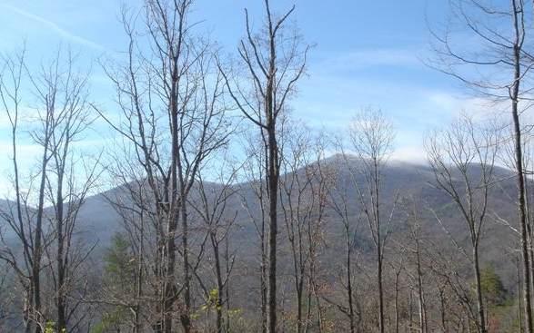 LT 21 Moon View, Blairsville, GA 30512 (MLS #300131) :: Path & Post Real Estate