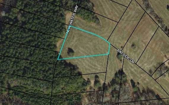 LOT42 Bayside Lane, Blairsville, GA 30512 (MLS #300135) :: RE/MAX Town & Country
