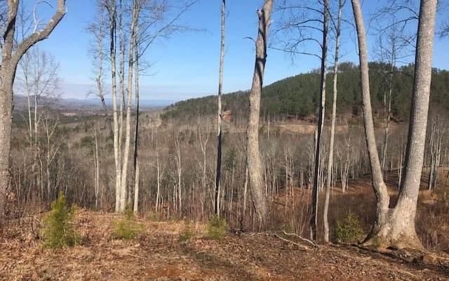 LT 93 Thirteen Hundred, Blairsville, GA 30512 (MLS #300424) :: Path & Post Real Estate