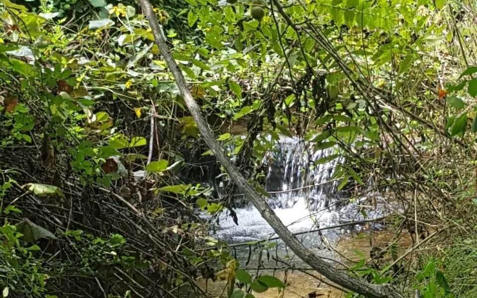 7904 Blue Ridge Dr - Photo 1