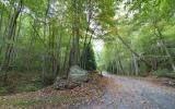 LT4 Overlook At Y Harris, Young Harris, GA 30582 (MLS #300632) :: Path & Post Real Estate