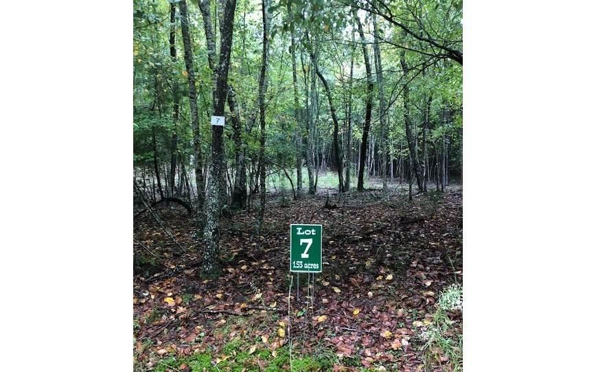 LOT 7 Hunters Ridge - Photo 1