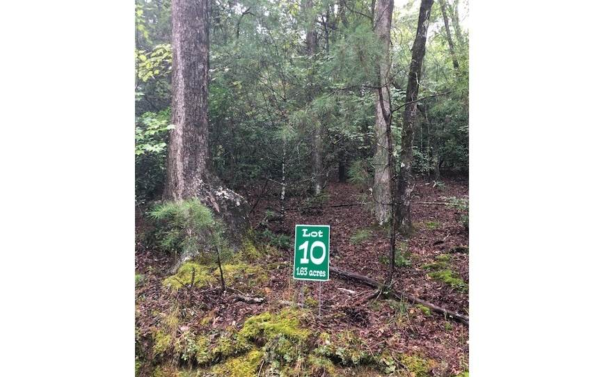 LT 10 Hunters Ridge - Photo 1