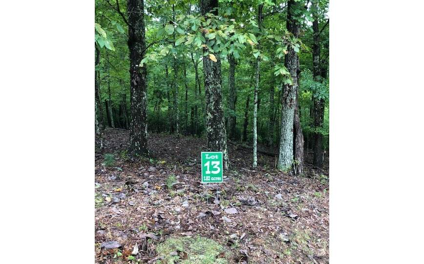 LT 13 Hunters Ridge - Photo 1