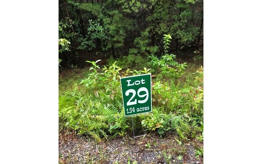 LT 29 Hunters Ridge - Photo 1