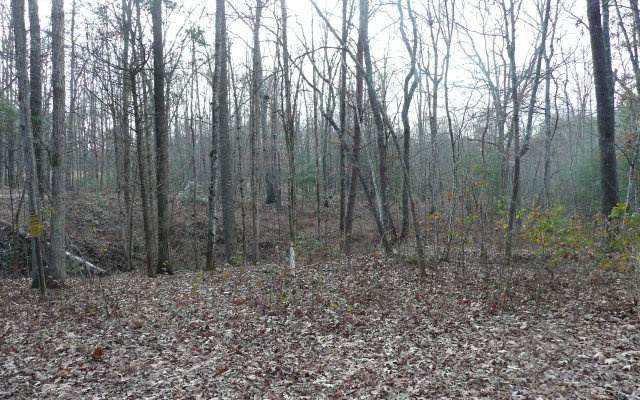 00 Millers Run, Murphy, NC 28906 (MLS #300968) :: RE/MAX Town & Country