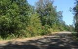 Jonagold Ln 7.01Ac, Blue Ridge, GA 30513 (MLS #301102) :: Path & Post Real Estate