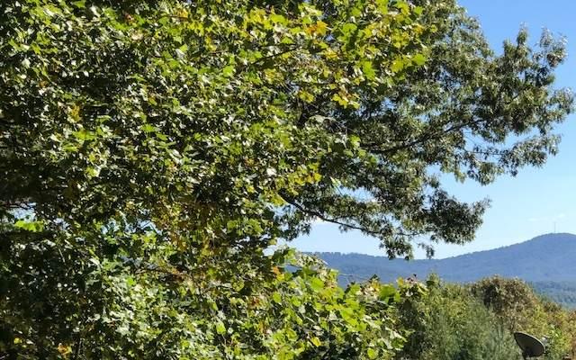 LOT38 Trails End Summit, Ellijay, GA 30540 (MLS #301239) :: Path & Post Real Estate