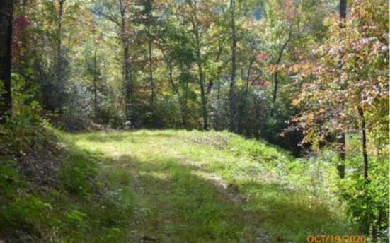 LT23 Shiloh Stables, Hayesville, NC 28904 (MLS #301611) :: Path & Post Real Estate