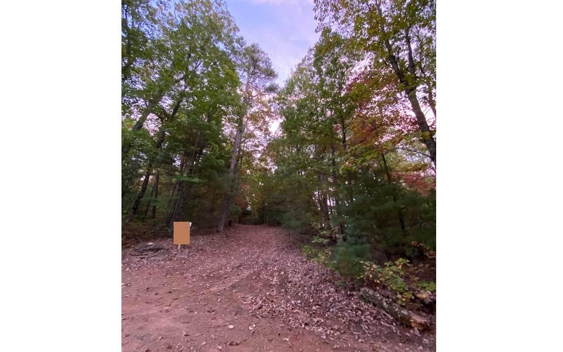 44 Mangums Trail - Photo 1