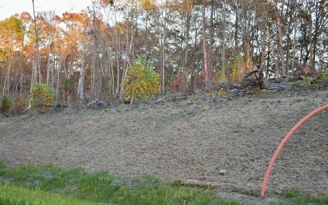 LT 58 Linger Longer, Ellijay, GA 30536 (MLS #302148) :: Path & Post Real Estate