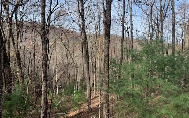 Bandit Lane, Blue Ridge, GA 30512 (MLS #302538) :: Path & Post Real Estate