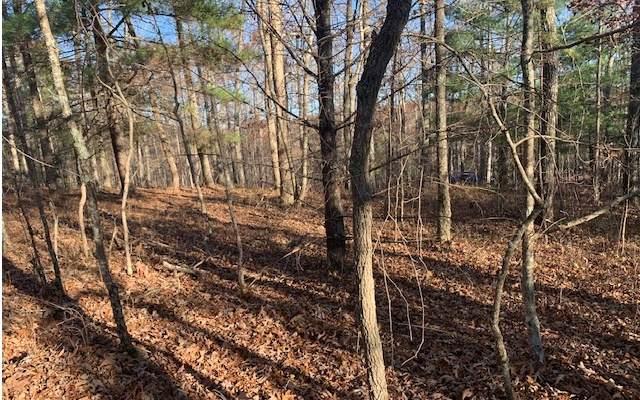 LOT10 West Wood Avenue, Blairsville, GA 30512 (MLS #302574) :: Path & Post Real Estate