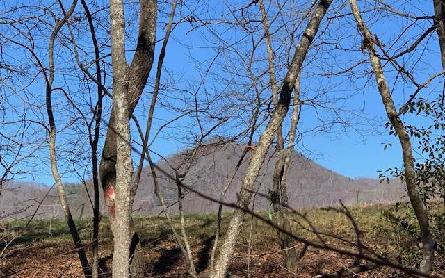 LOT 3 Penlands Indian Trl, Hayesville, NC 28904 (MLS #302760) :: Path & Post Real Estate