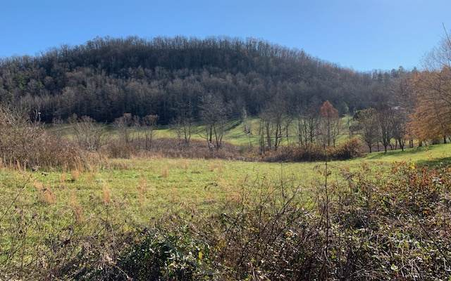 LT 11 Misty Creek Meadows, Hayesville, NC 28904 (MLS #302761) :: Path & Post Real Estate