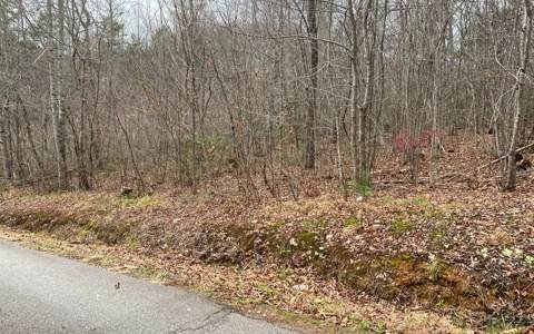 000 Peachtree Hills Rd, Murphy, NC 28906 (MLS #302791) :: Path & Post Real Estate