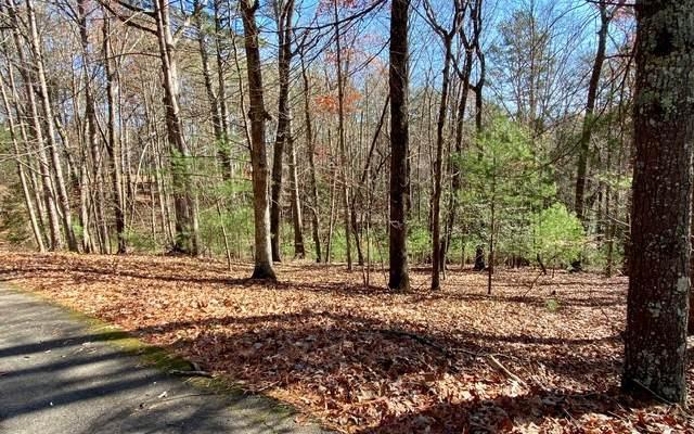 LT99R Shenendoa Dr, Ellijay, GA 30540 (MLS #302811) :: Path & Post Real Estate