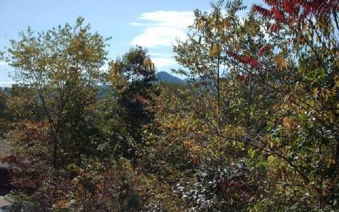Mountain Drive, Hiawassee, GA 30546 (MLS #302875) :: Path & Post Real Estate