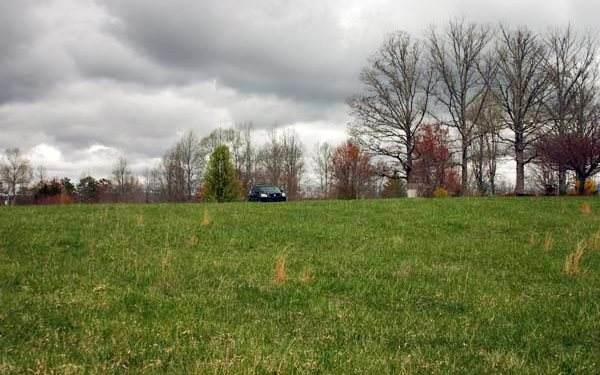 Holland Drive, Young Harris, GA 30582 (MLS #303680) :: Path & Post Real Estate