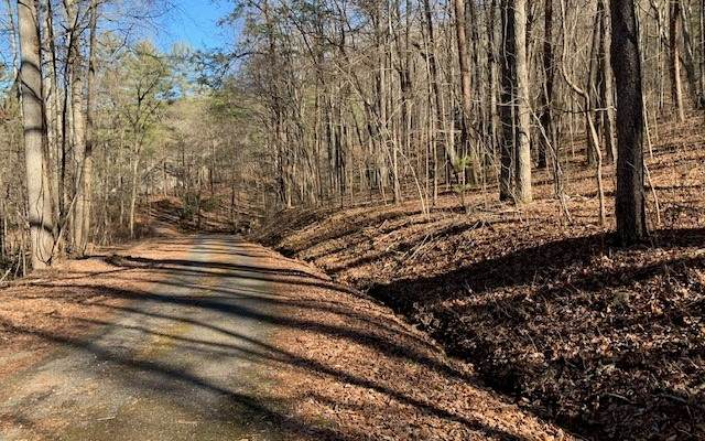 LOT34 Timberline Drive, Young Harris, GA 30582 (MLS #303859) :: Path & Post Real Estate
