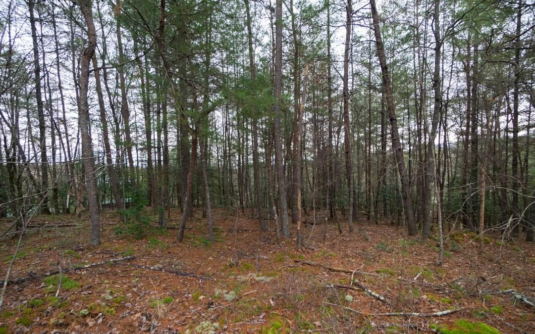 LOT13 Woodland Trails - Photo 1