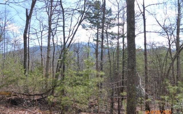 LT 3 Blue Ridge Heights, Hayesville, NC 28904 (MLS #303932) :: Path & Post Real Estate