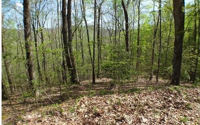 #13 Deweese Rd, Topton, NC 28781 (MLS #304085) :: Path & Post Real Estate