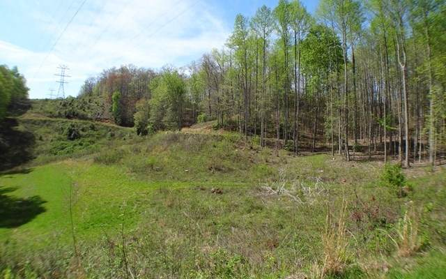 10-11 Deweese Rd, Topton, NC 28781 (MLS #304086) :: Path & Post Real Estate