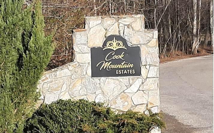 LT 11 Cook Mountain Estate - Photo 1