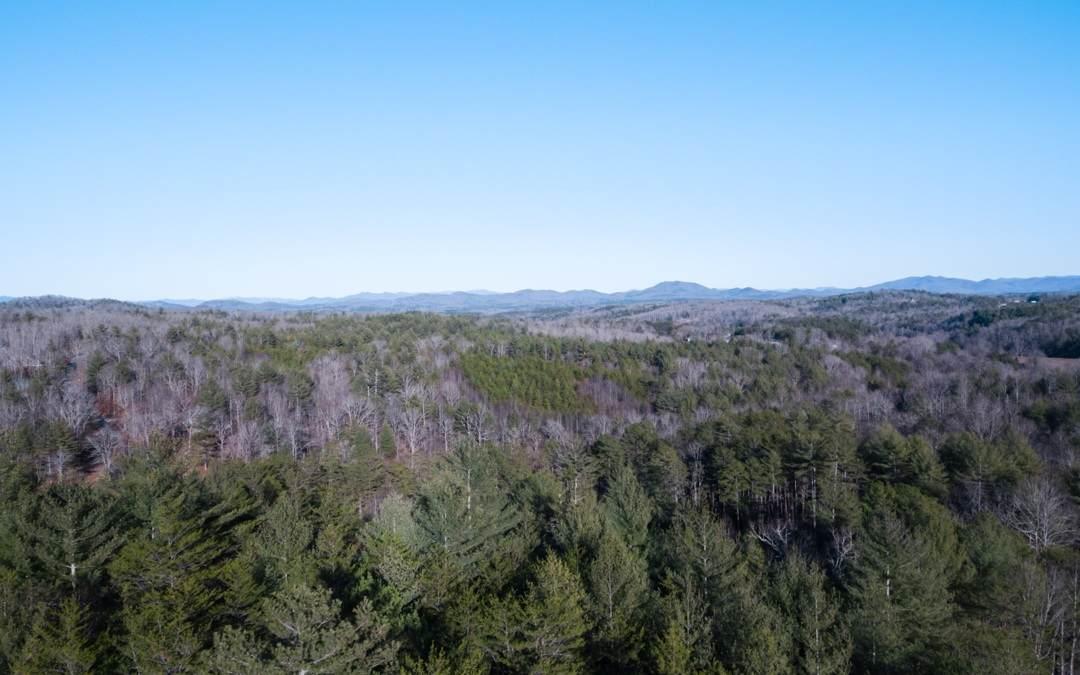 LOT19 Woodland Trails - Photo 1